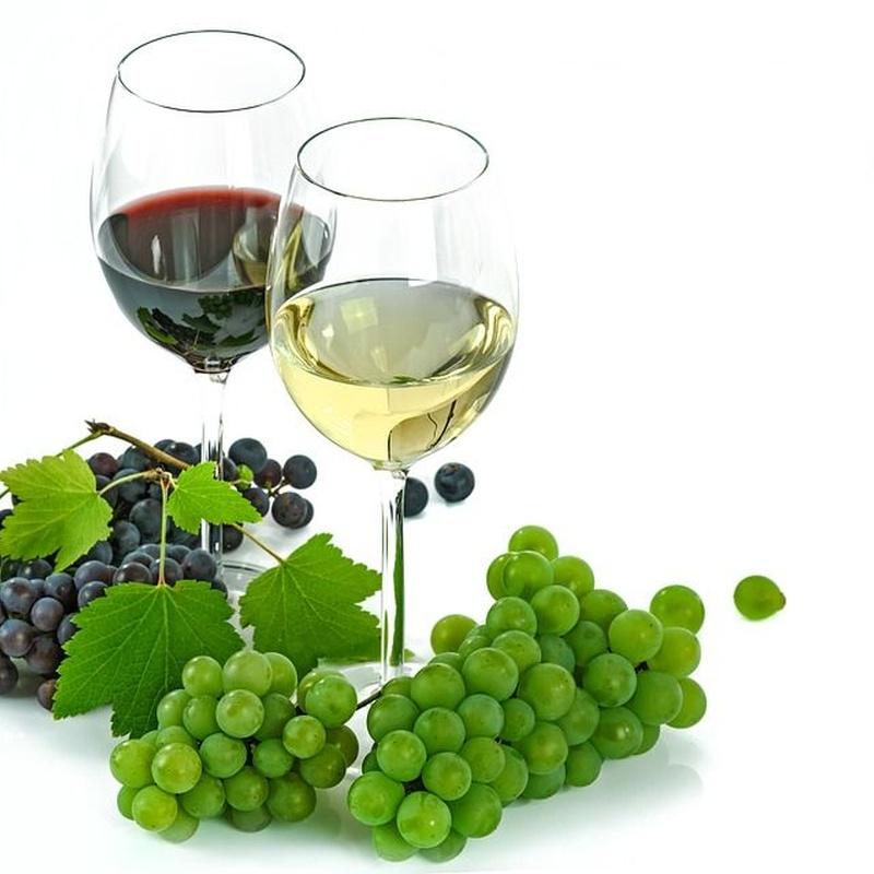 Nuestros vinos: Nuestra carta de Centro Gallego