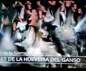 Los gansos de La Hueveria en el Programa de España Directo RTVE1 2017