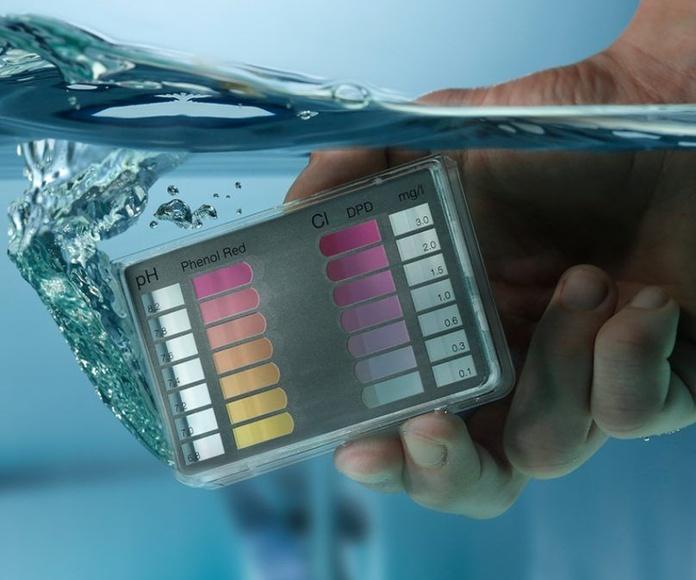 Mantenimiento de piscinas: Productos y servicios de Dispool / Jardinería Herrera
