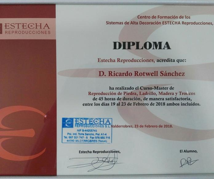 Certificación Estrecha Reproducciones - Reproducción Piedras,Ladrillo,Madera y Troncos.