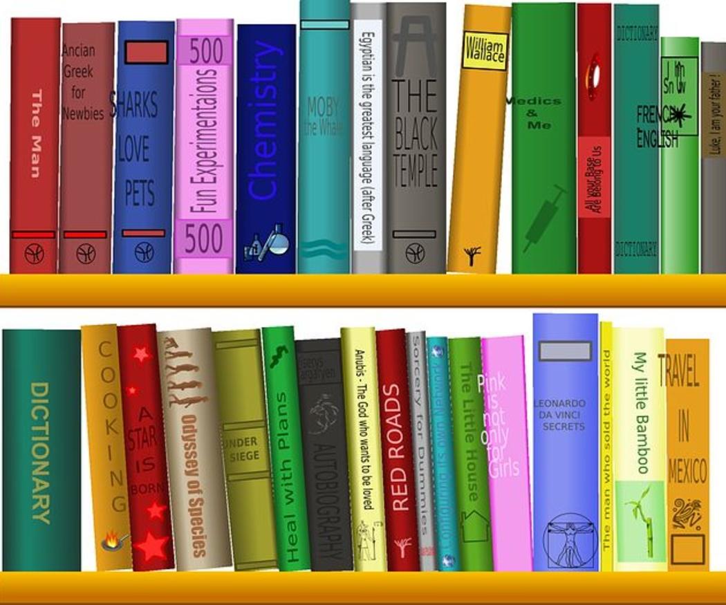 Consejos cuando tenemos que trasladar muchos libros