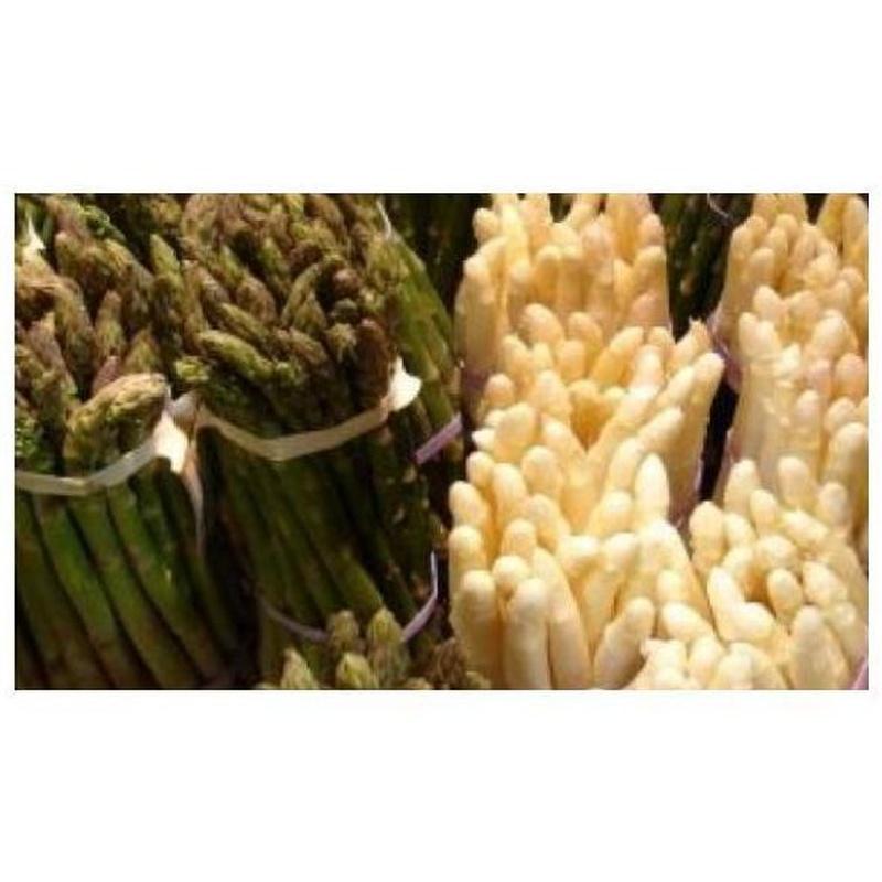 Espárragos: Productos de Mundifruit