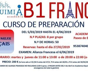 B1 DE FRANCES. (Examen Alianza Francesa 6 JUNIO 2019)