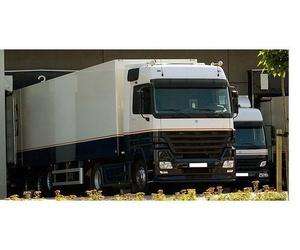 Todos los productos y servicios de Transporte de mercancías por carretera: Transportes Mitxelena