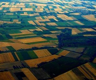 Concentración parcelaria de terrenos