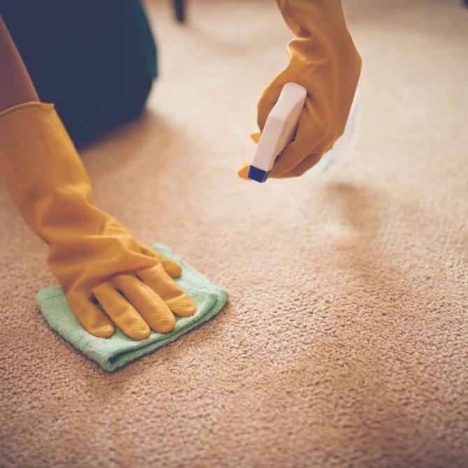 Tipos de limpieza de alfombras