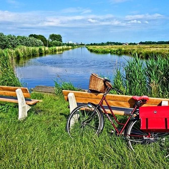 Cómo elegir el mejor portabebés para la bicicleta