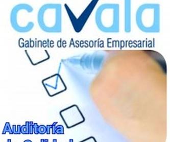 Planes estragégicos de responsabilidad social: Servicios de Cavala