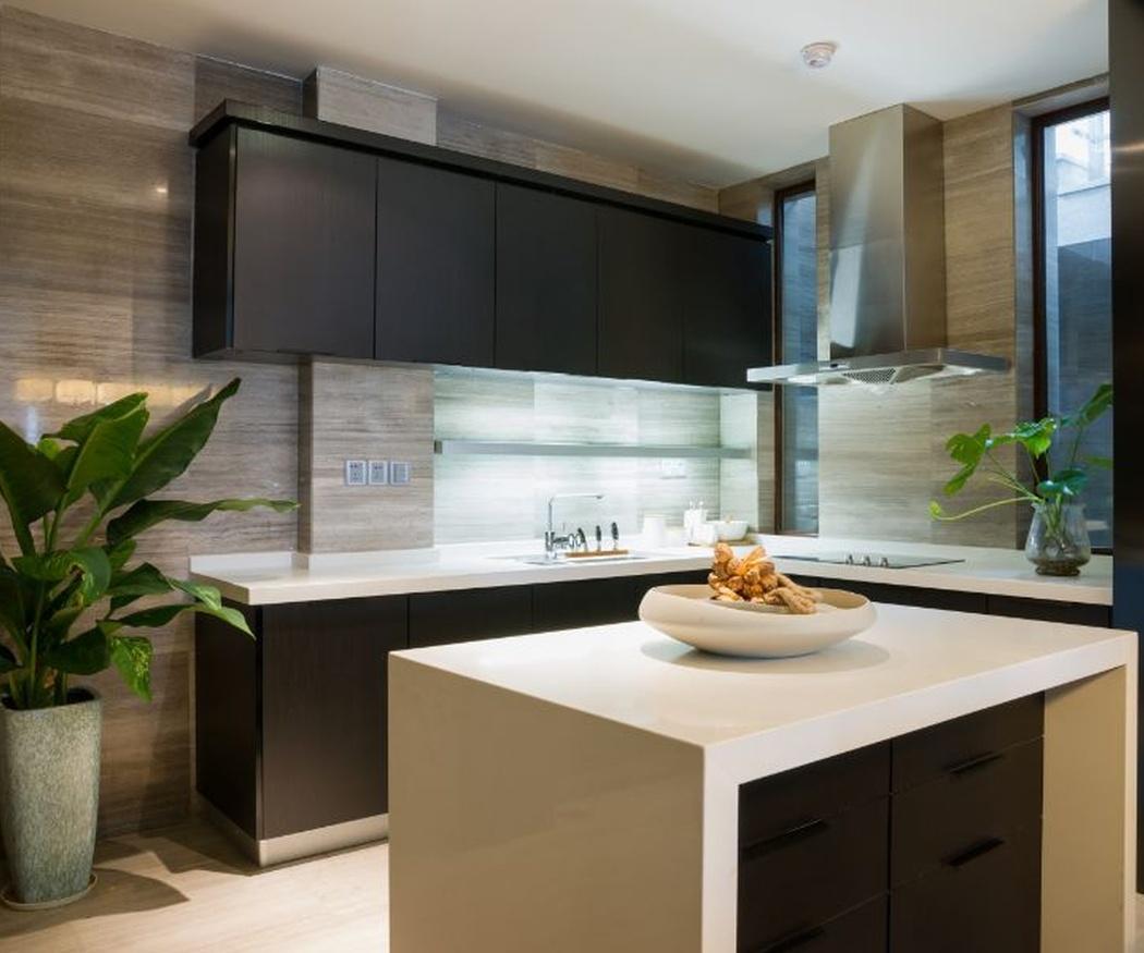 El tono negro en las cocinas: sofisticación