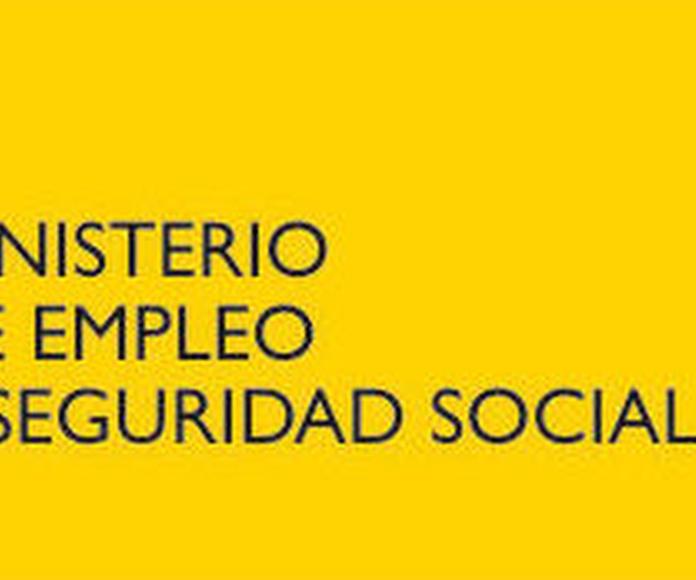 Formación de especialidad propia: Proyectos y Servicios de Asociación Domitila