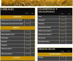 Lonja de Albacete & Informe mundial de mercados