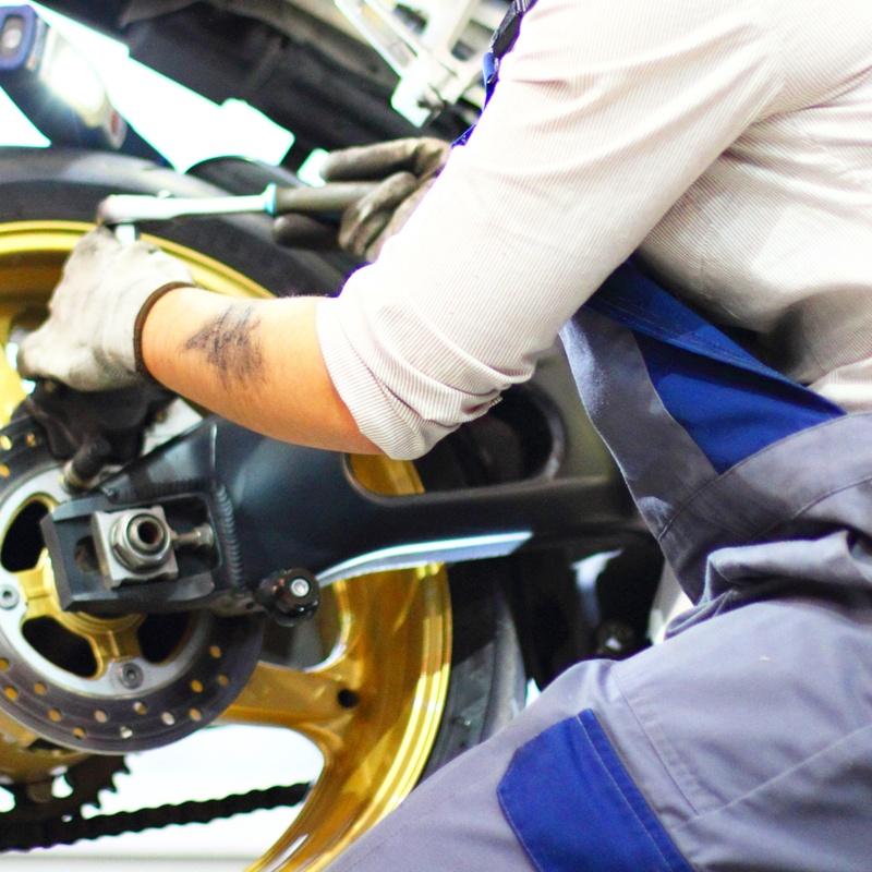 ITV: Servicios de Bonobo´s Garage