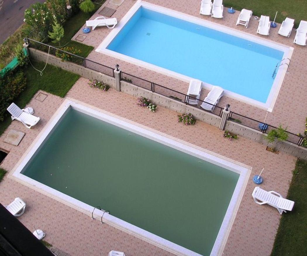 Eliminar las algas de la piscina