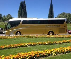 Transporte para viajes y excursiones