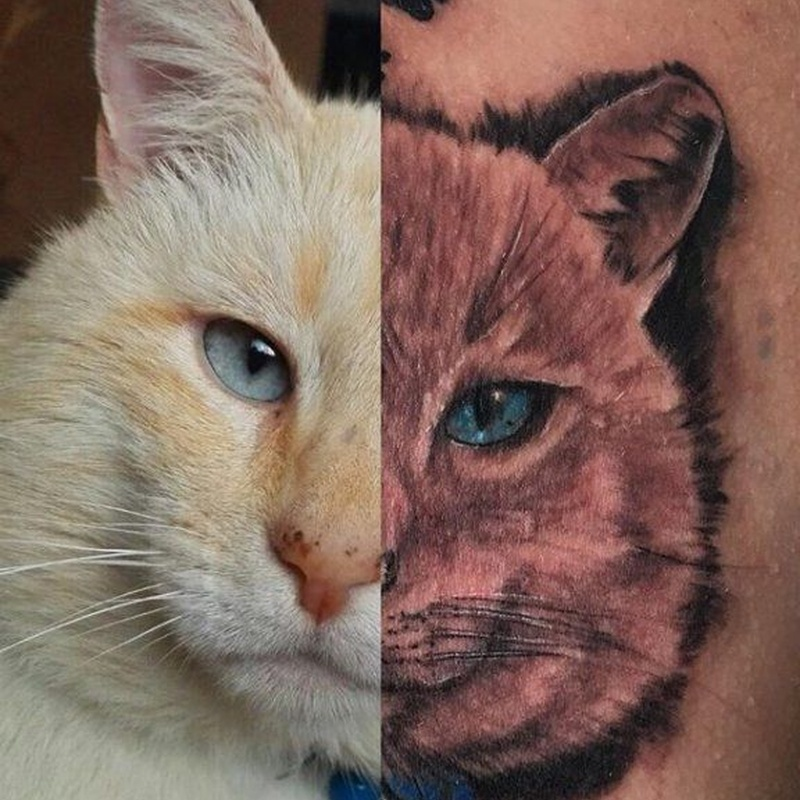 Animales: Tattoos de Lost Soul Tattoo