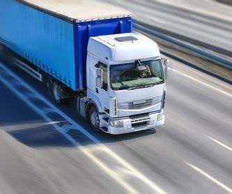 Transporte basculante: Servicios de Transerrasol
