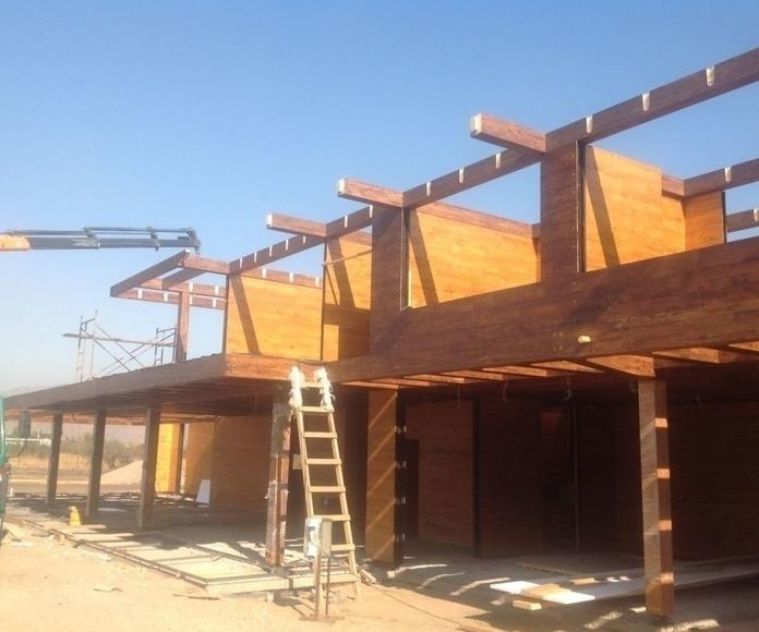 Construcción de casa de madera linea moderna Cortelima