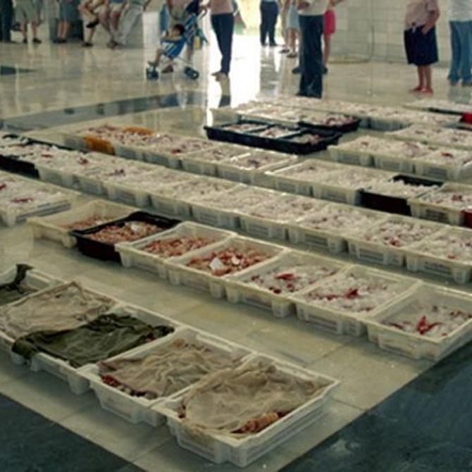 Características del buen proveedor de pescado