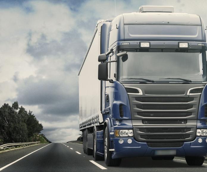 Transporte por carretera a nivel nacional: Servicios de TRANSPALOMARES