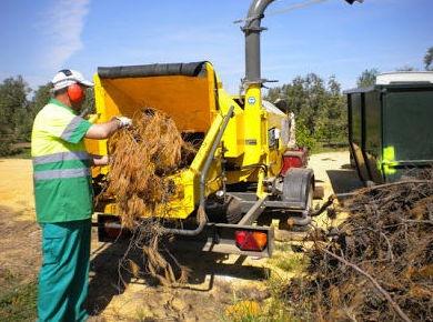 Maquina trituradora de ramas y arboleda
