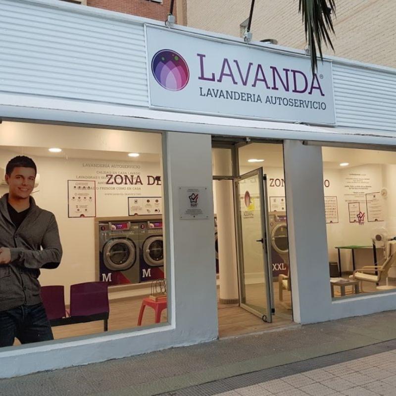 Local climatizado y con WiFi: Servicios de Lavandería Lavanda