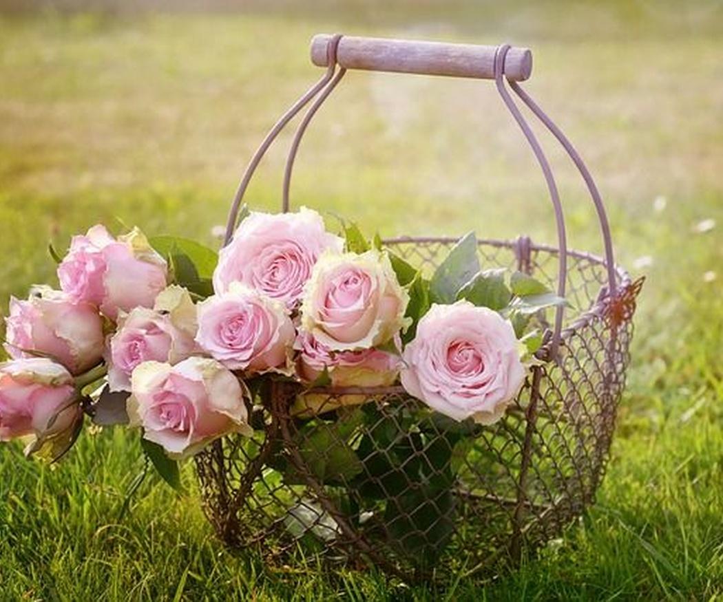 Ramos de rosas personalizados