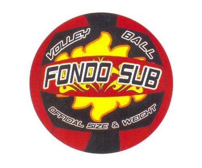 Balón voley fuego: Productos de Deportes Canariasana, S.L.