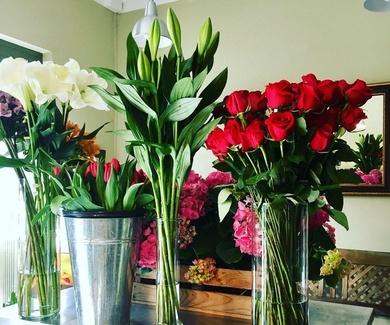 *Enero*Winter Flowers