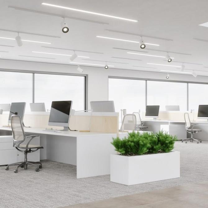 La falta de limpieza puede afectar a la productividad de la empresa