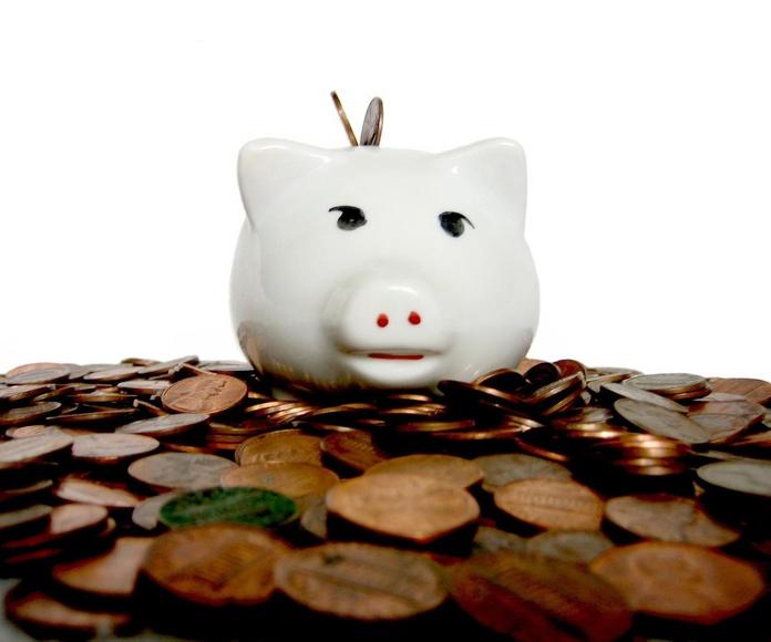 Subvenciones: Servicios de Gestors Associats Porcar Fulleda