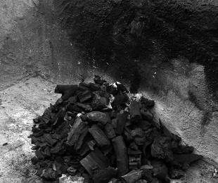 ¿Qué es el carbón de encina?