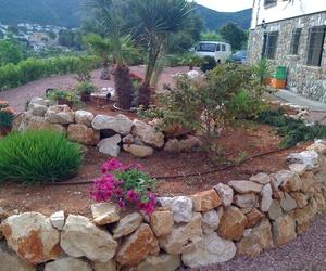 Mantenimiento de jardines en Alicante: Ayamanda