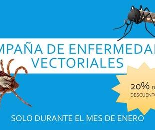 Campaña de enfermedades vectoriales