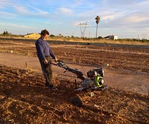 Sustentabilidad agroalimentaria y corporativa
