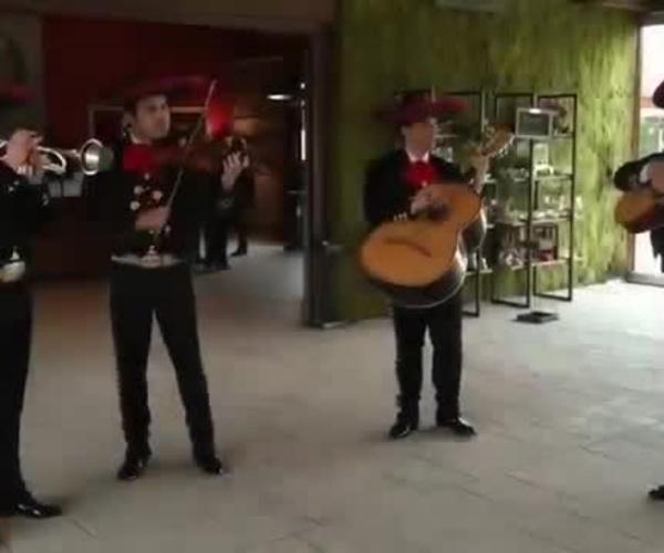 Mariachi Fiesta Ranchera - Mariachis del Grupo Alborada ( Bodas )