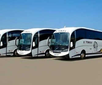 ADQUISICIÓN DE IONIZADOR DE AIRE: Servicios de Autobuses A. Tomás
