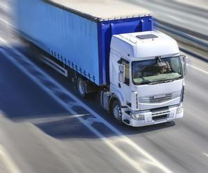 Empresa de transportes por carretera en Alicante