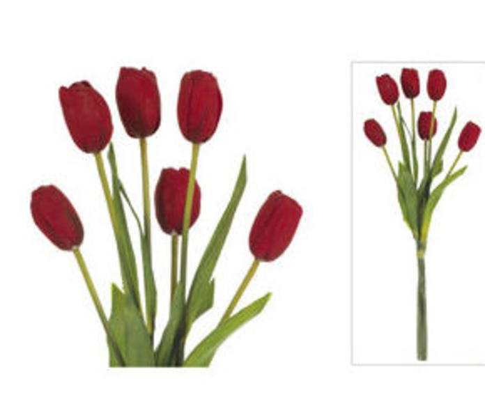 Bouquet Tulipán X6 Látex