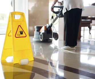 Limpieza de cristales y escaparates: Servicios de Limpiezas Saraabraham