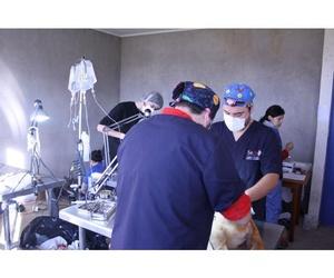 Todos los productos y servicios de Veterinarios: Centro Veterinario Ciempozuelos