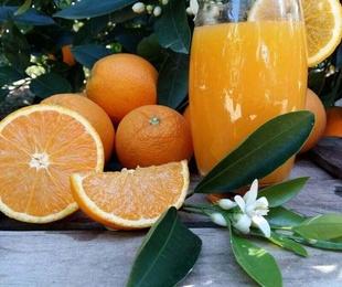 Naranjas zumo mediano 15 kg