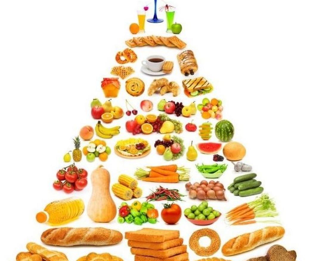 Distintos tipos de dietas