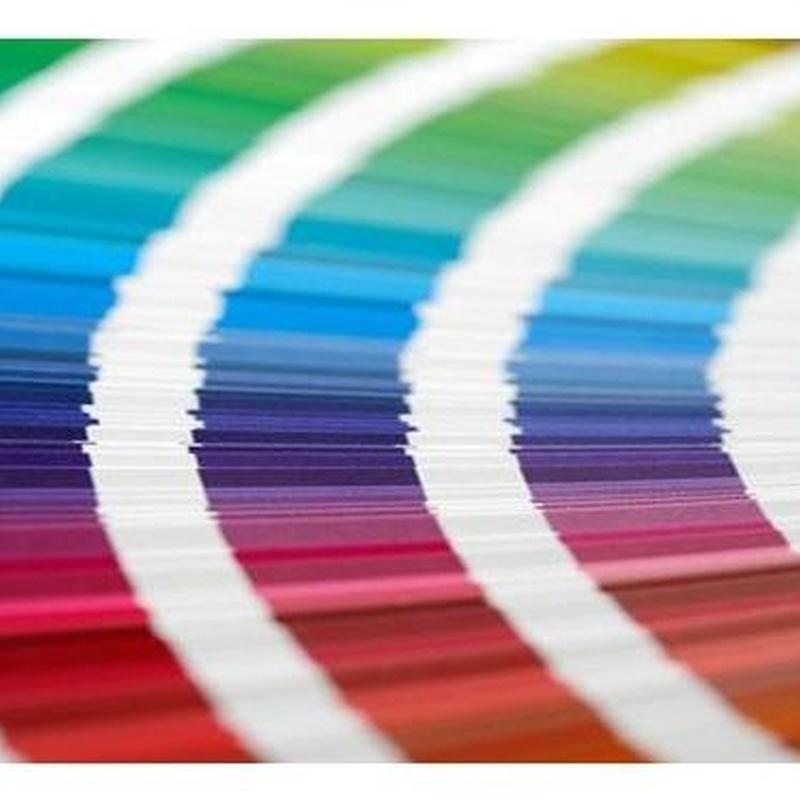 Impresión digital: Catálogo de Coseno