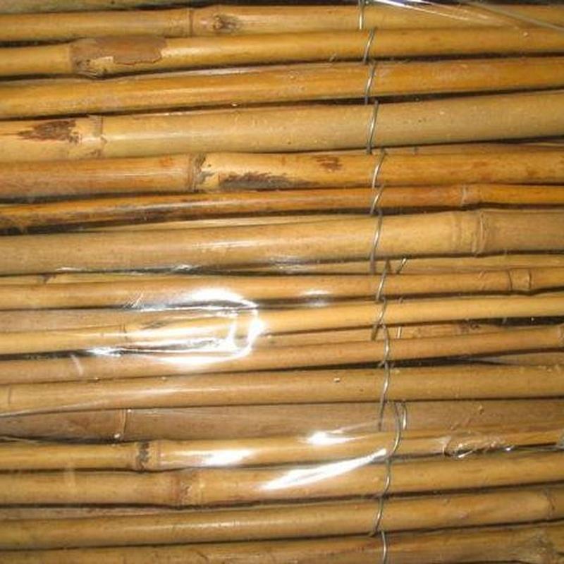 Bambú: Productos de Cañizos Andalucía