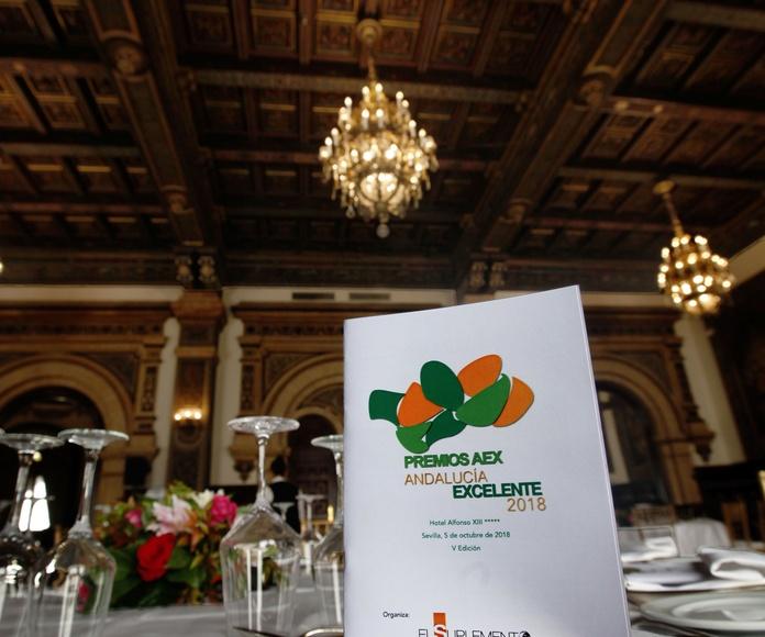 Ecopoda, premio Andalucía Excelente 2018