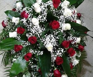 Palma de 48 rosas