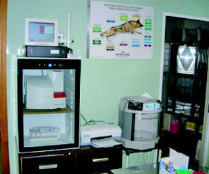 Aparatos de análisis hematológico, Iincubadora... Las Palmas de Gran Canaria http://www.clinica-veterinaria-losgalgos.es/es/