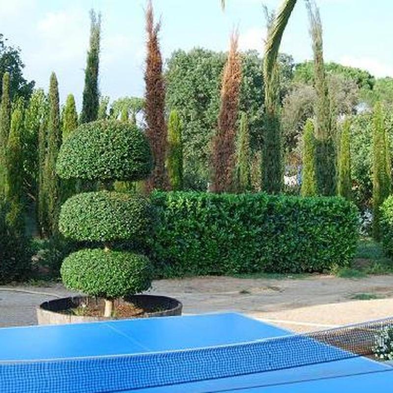 Vivero: Catálogo de Jardineria Costa