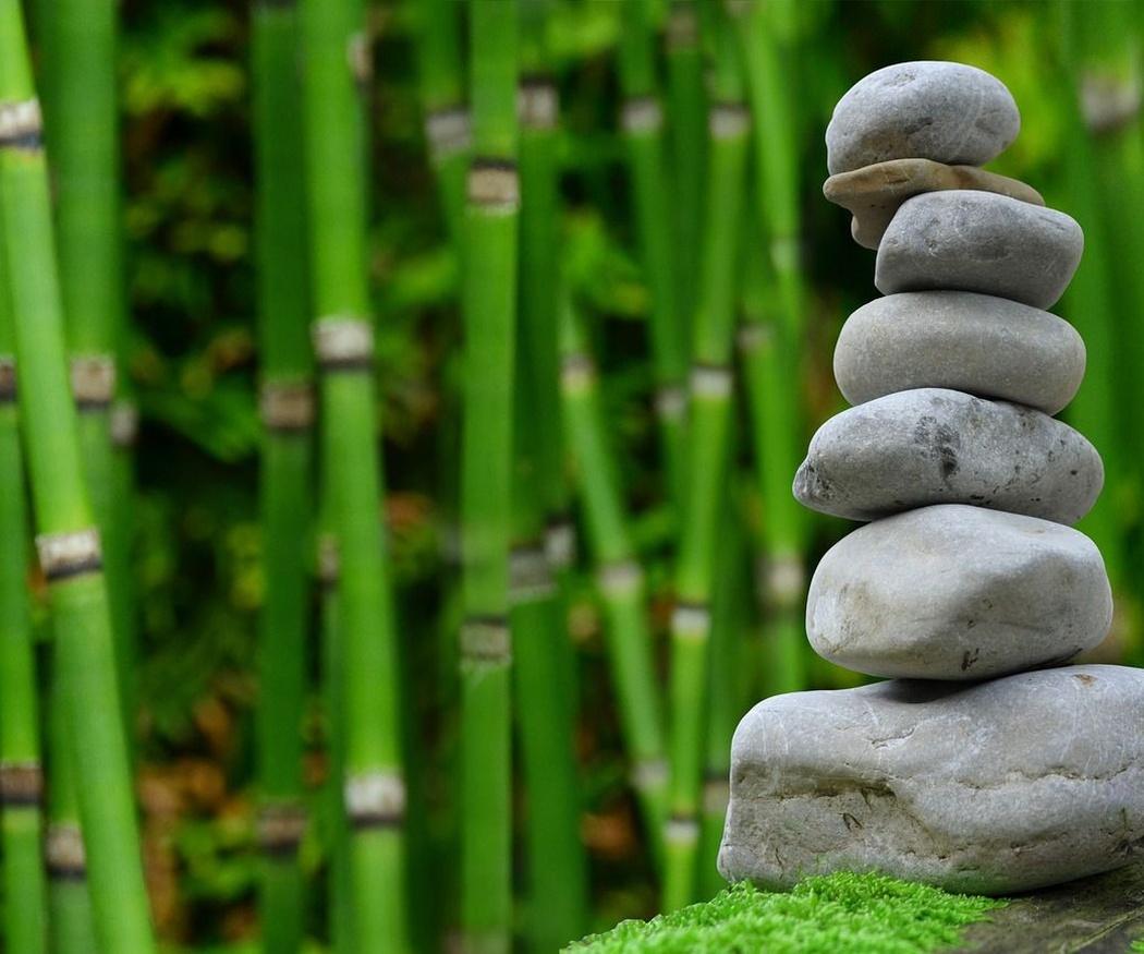 Ventajas de tener un jardín zen