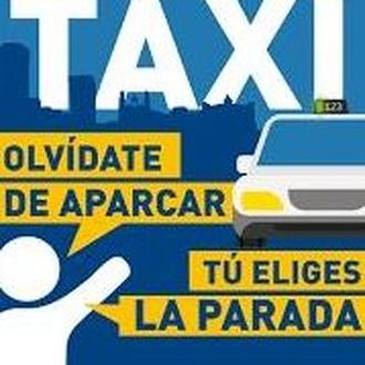 Furgo Taxis 5, 6, 7, 8 y 9 PLAZAS ~ 5, 6, 7, 8 and 9 PLAZAS Minivan Taxis